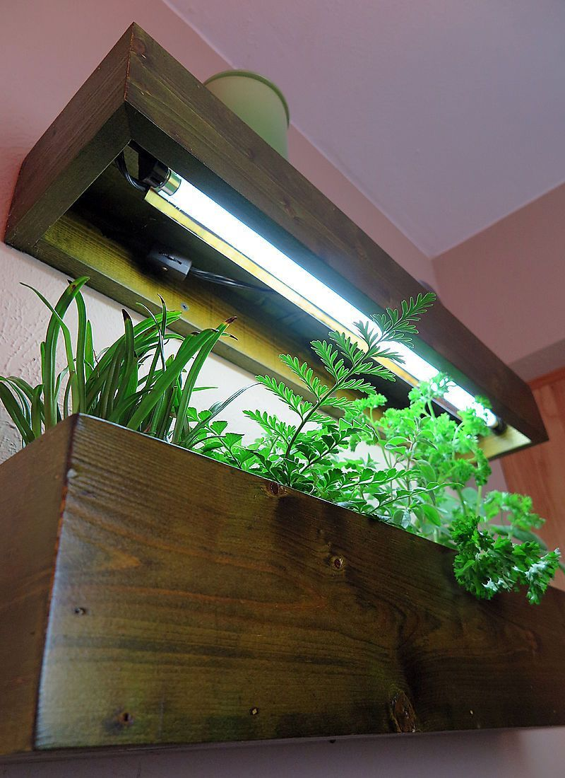 Urban Gardening Kitchen Grow Light Shelves For Herbs Halleck
