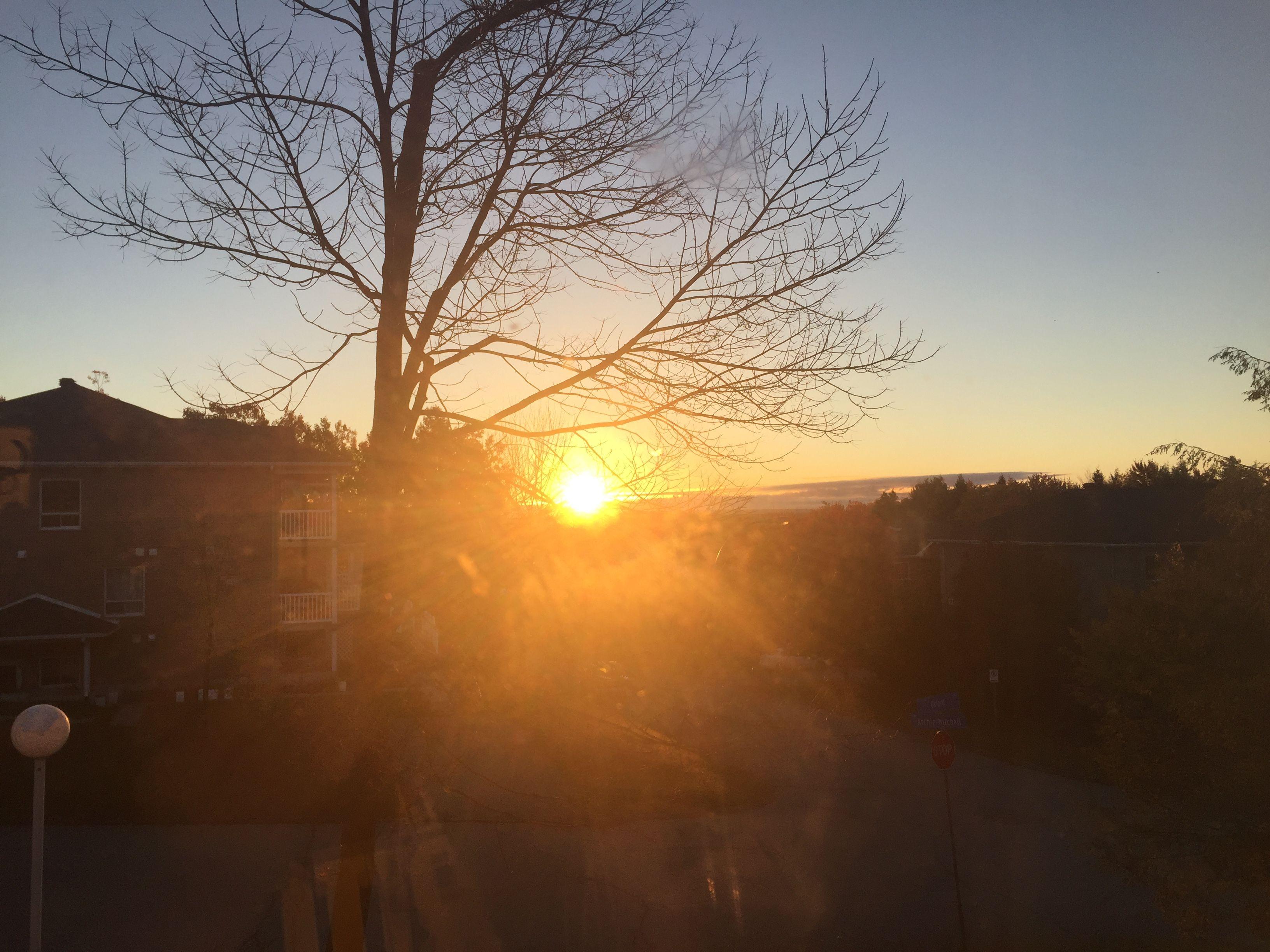 Sunrise in sherbrooke 📷 #Sunrise #Photography