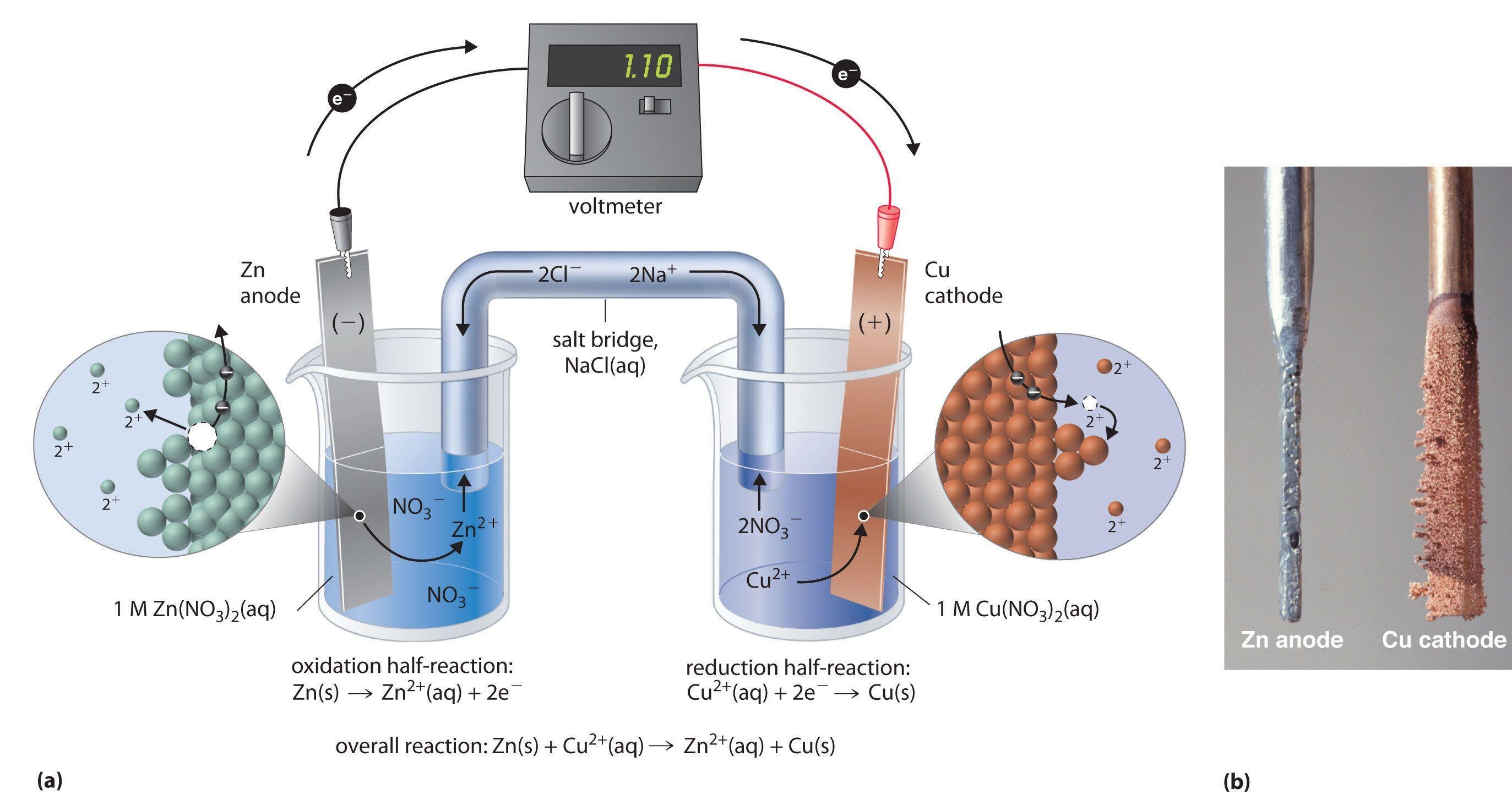 Electrochemical Cells Electrochemistry Chemistry Experiments Environmental Chemistry