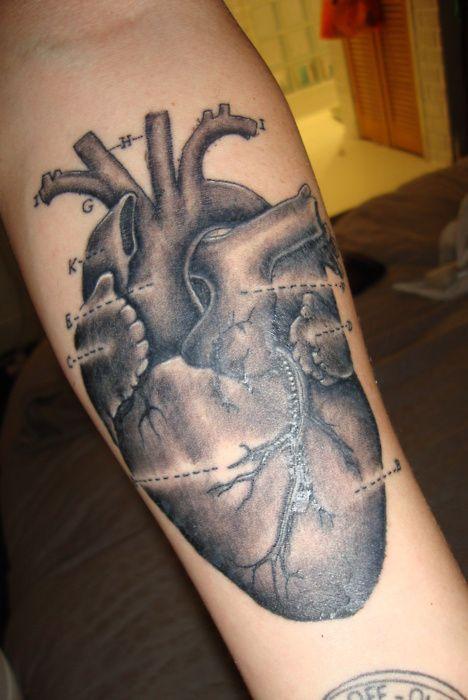 Pin By Wes Joyce On Tattoos Pinterest Original Sin Human Heart