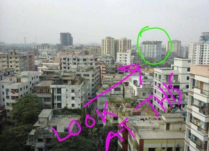 Rooftop Garden in Dhaka, Bangladesh   Bangladesh, Dhaka