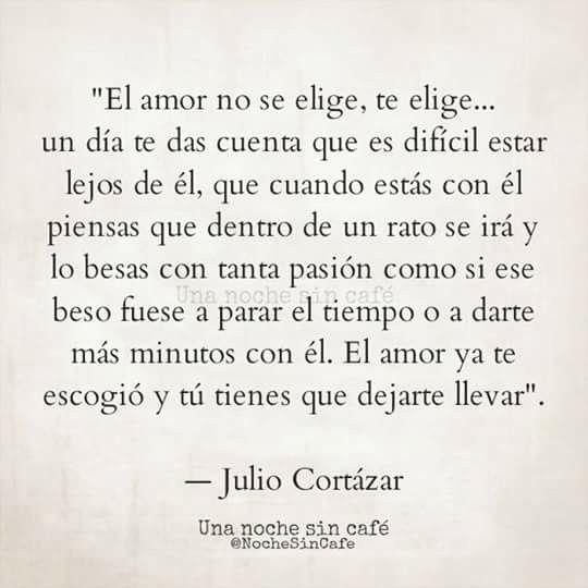 El Amor No Se Elige Te Elige Frases Citas Juliocortazar