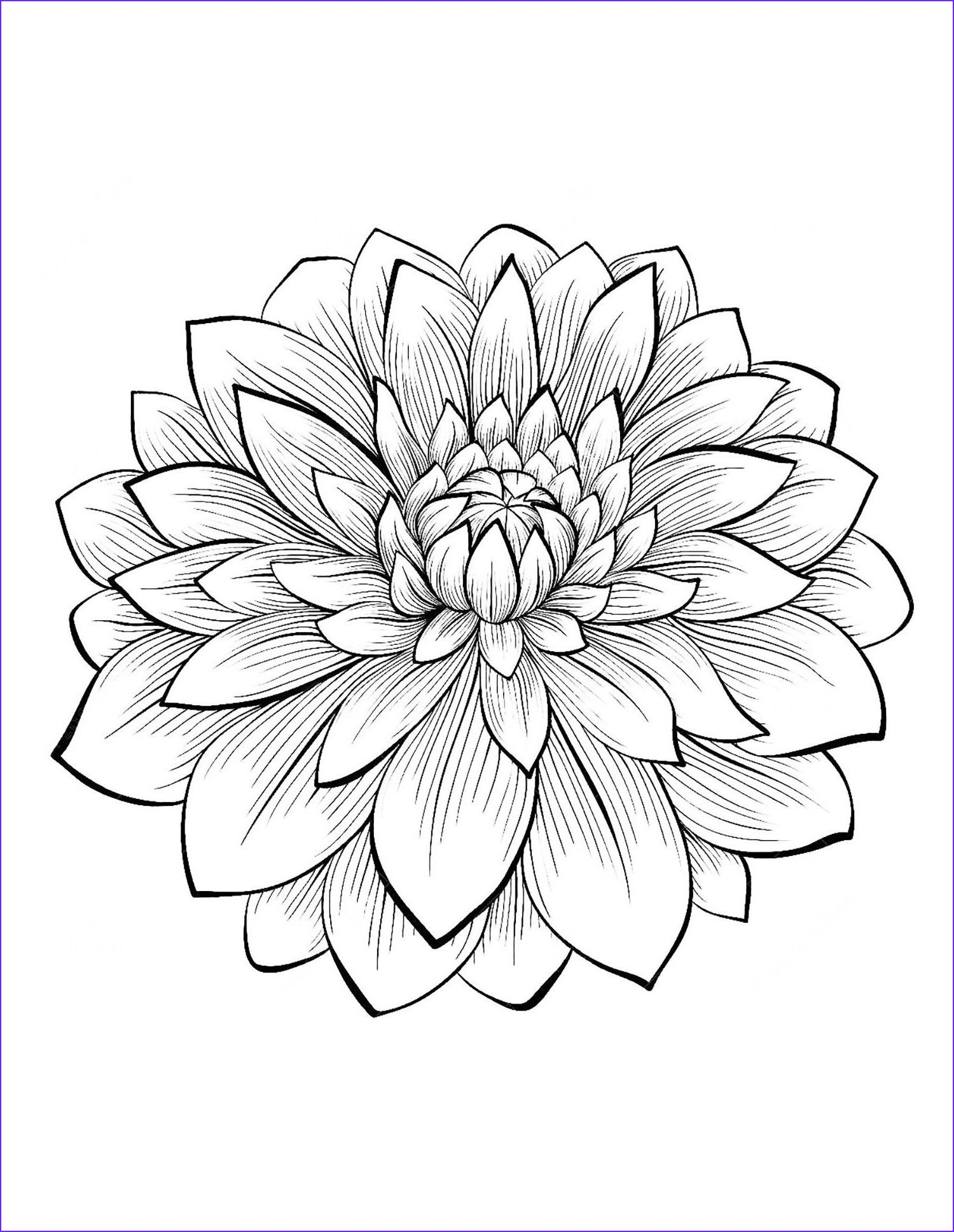 Lotus Flower Coloring Page Youngandtae Com Printable Flower Coloring Pages Flower Coloring Pages Mandala Coloring Pages