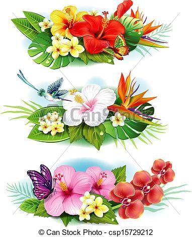 Vector Clip Art Of Arrangement From Tropical Flowers Csp15729212