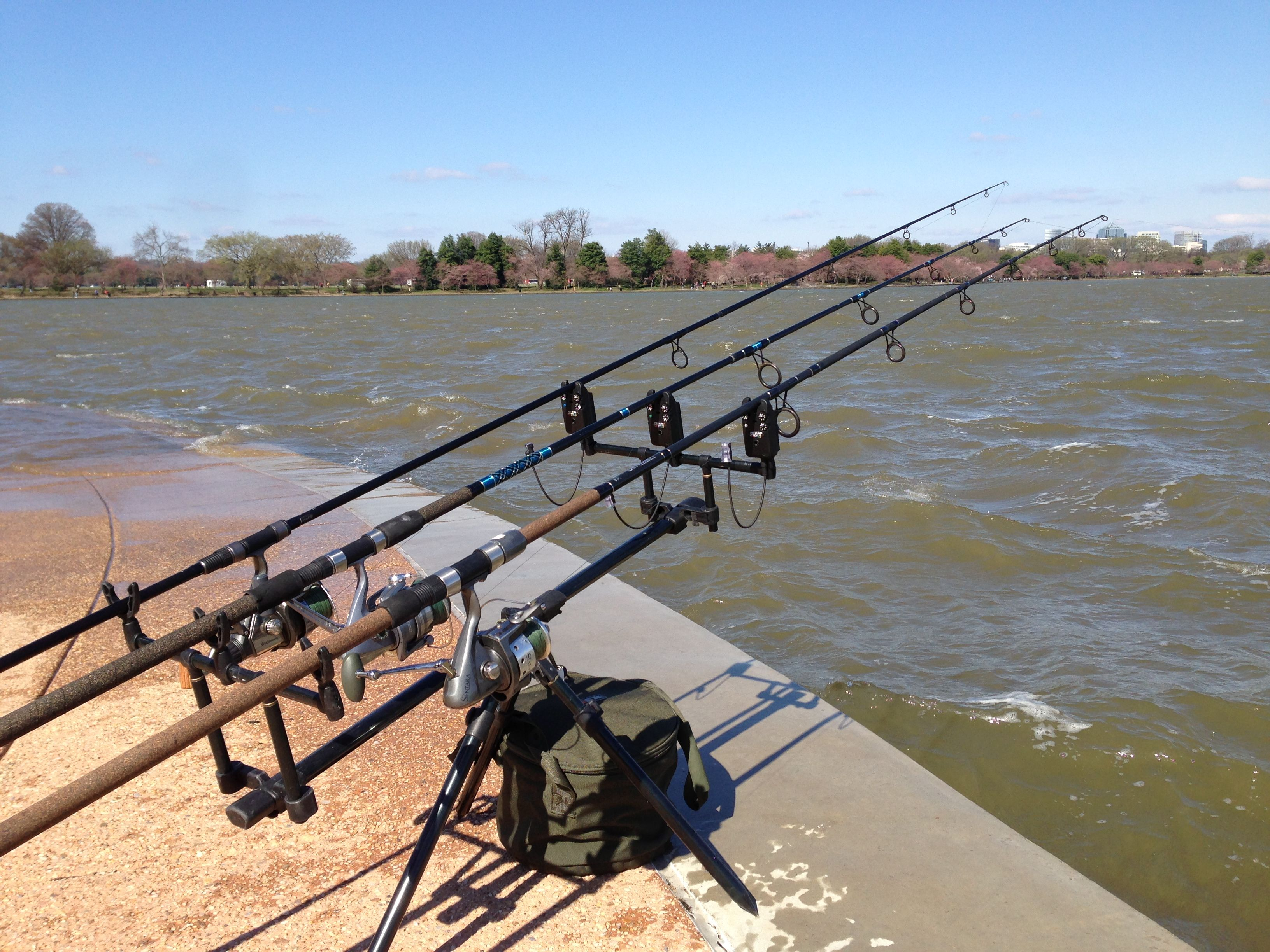 Pin By Catfish And Carp On Carp Fishing Gear Pesca