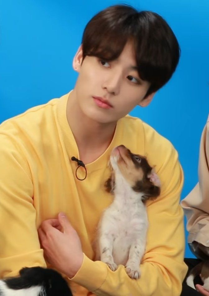 Twitter Bts Jungkook Jungkook Puppies