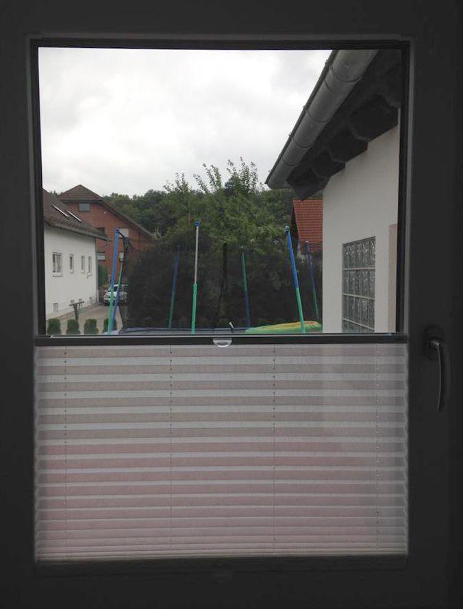 Sensuna sischtschutz plissee am fenster k che - Kuchenfenster sichtschutz ...
