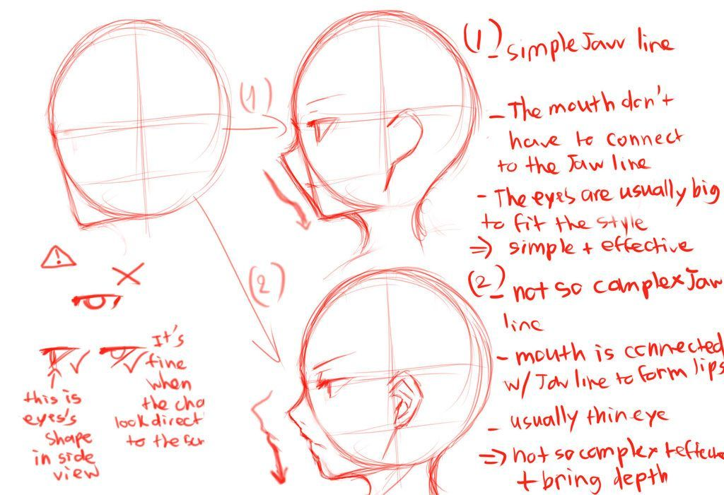 Side View Guide By Krissin Deviantart Com On Deviantart Side View Drawing Drawing Heads Face Side View Drawing