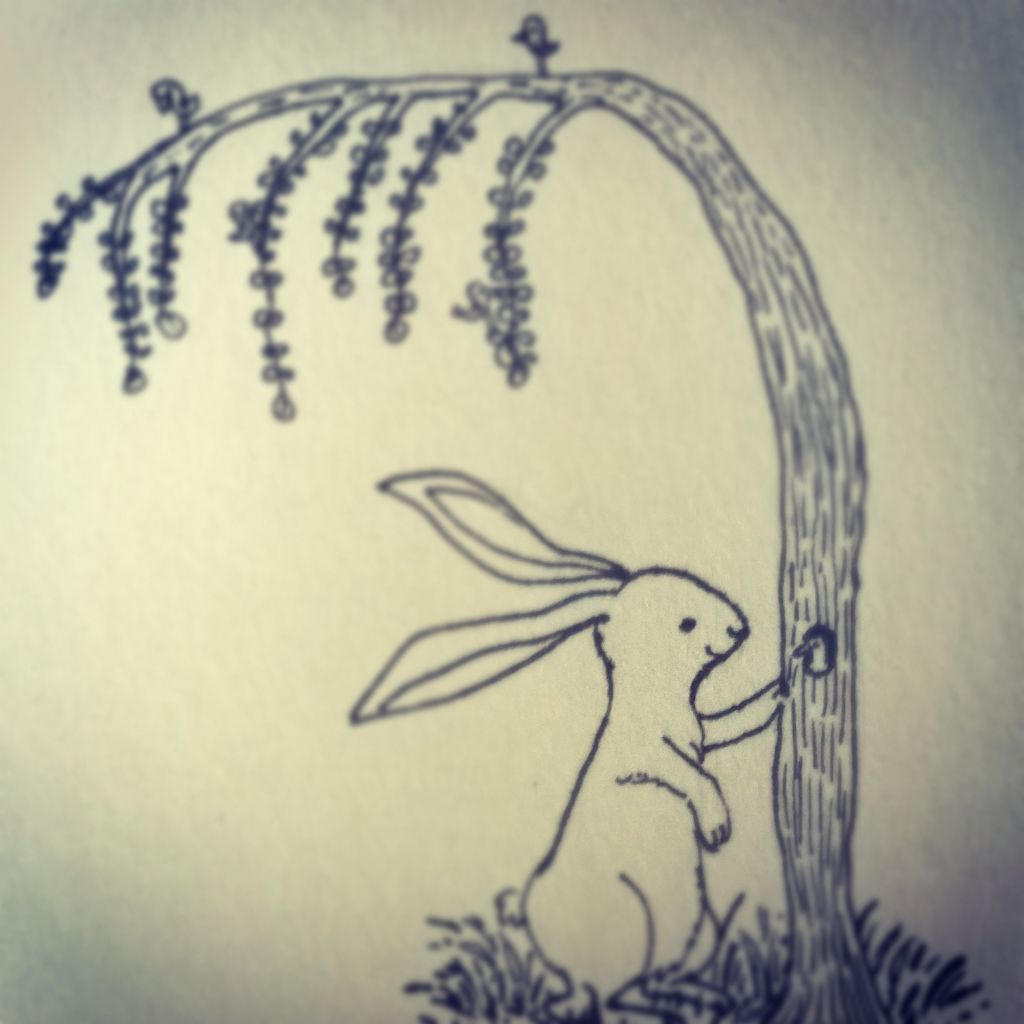 one of the page in my book——The Rabbit.