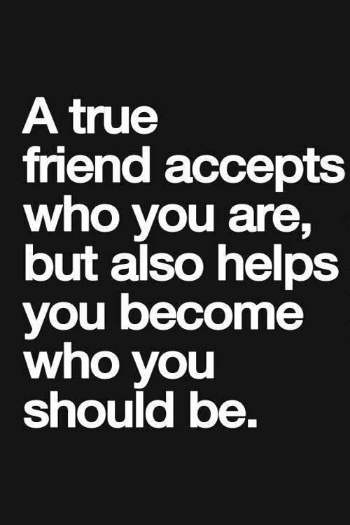 True Friend Quotes Prepossessing A True Friend  Friendship Quotes  Friendship Quotes True Friends