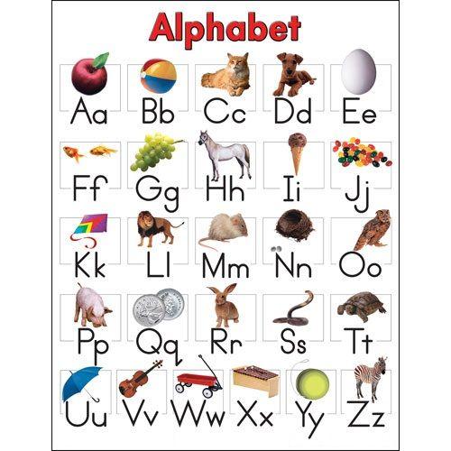 Alphabet also expert pinterest charts english rh