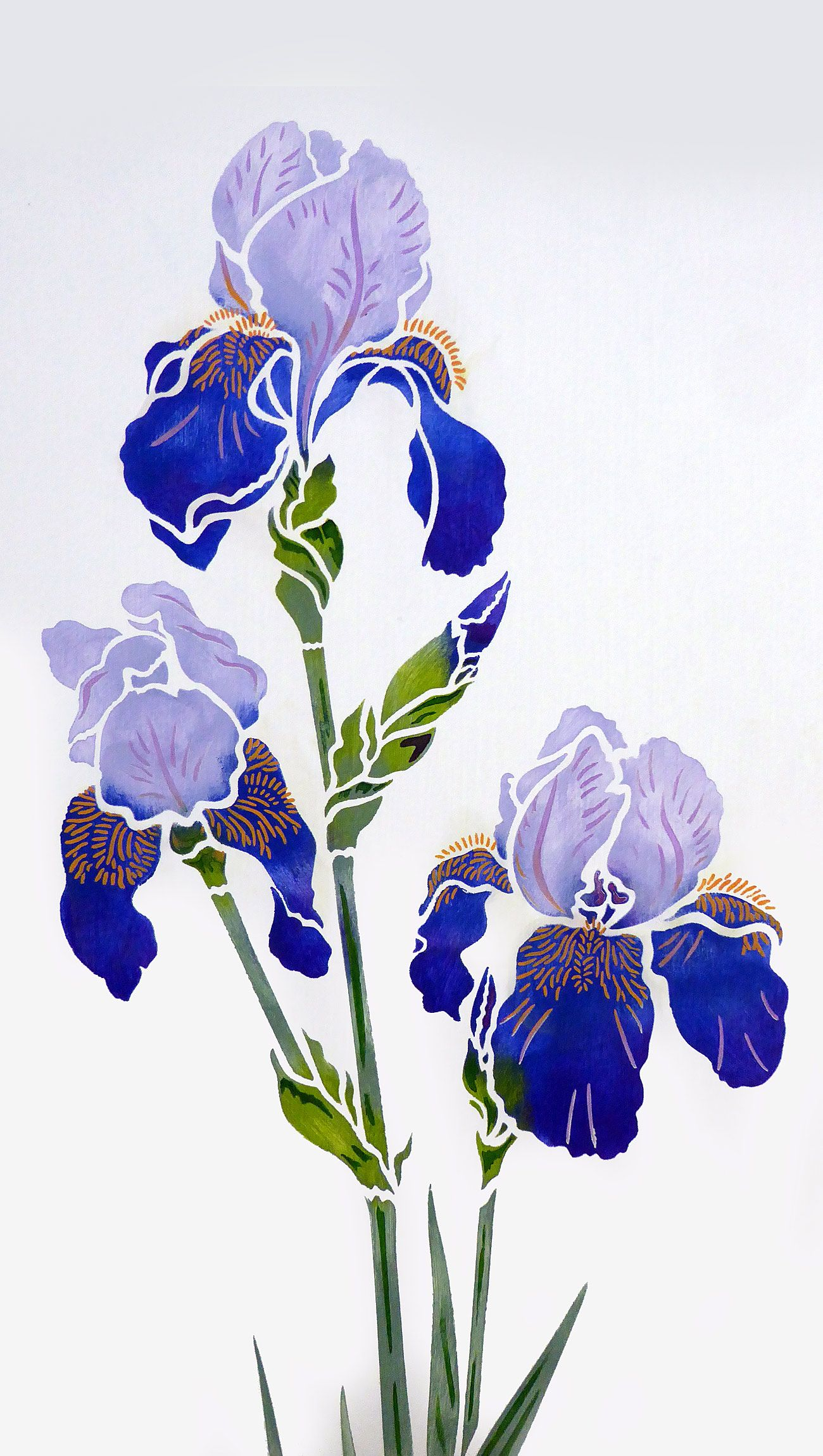 Iris Stencil 2 Henny Donovan Motif Iris Drawing Iris Painting Flower Drawing Design