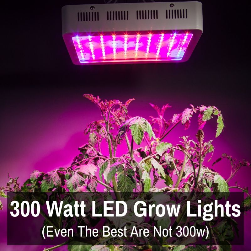 300 Watt Led Grow Lights Even The Best Are Not 300w Led