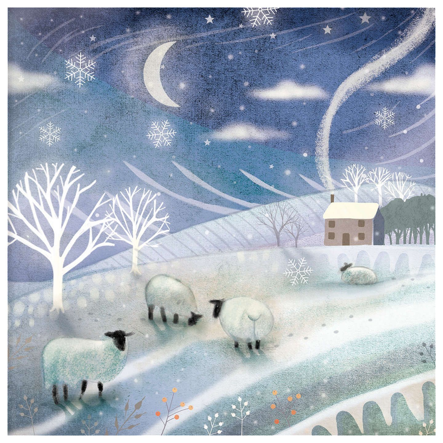 Buy Woodmansterne Garden Companion Charity Christmas Cards