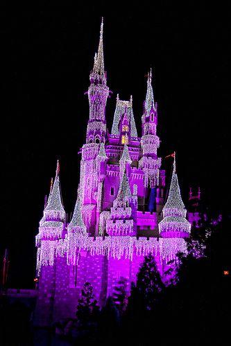 Cinderella's Castle in Purple