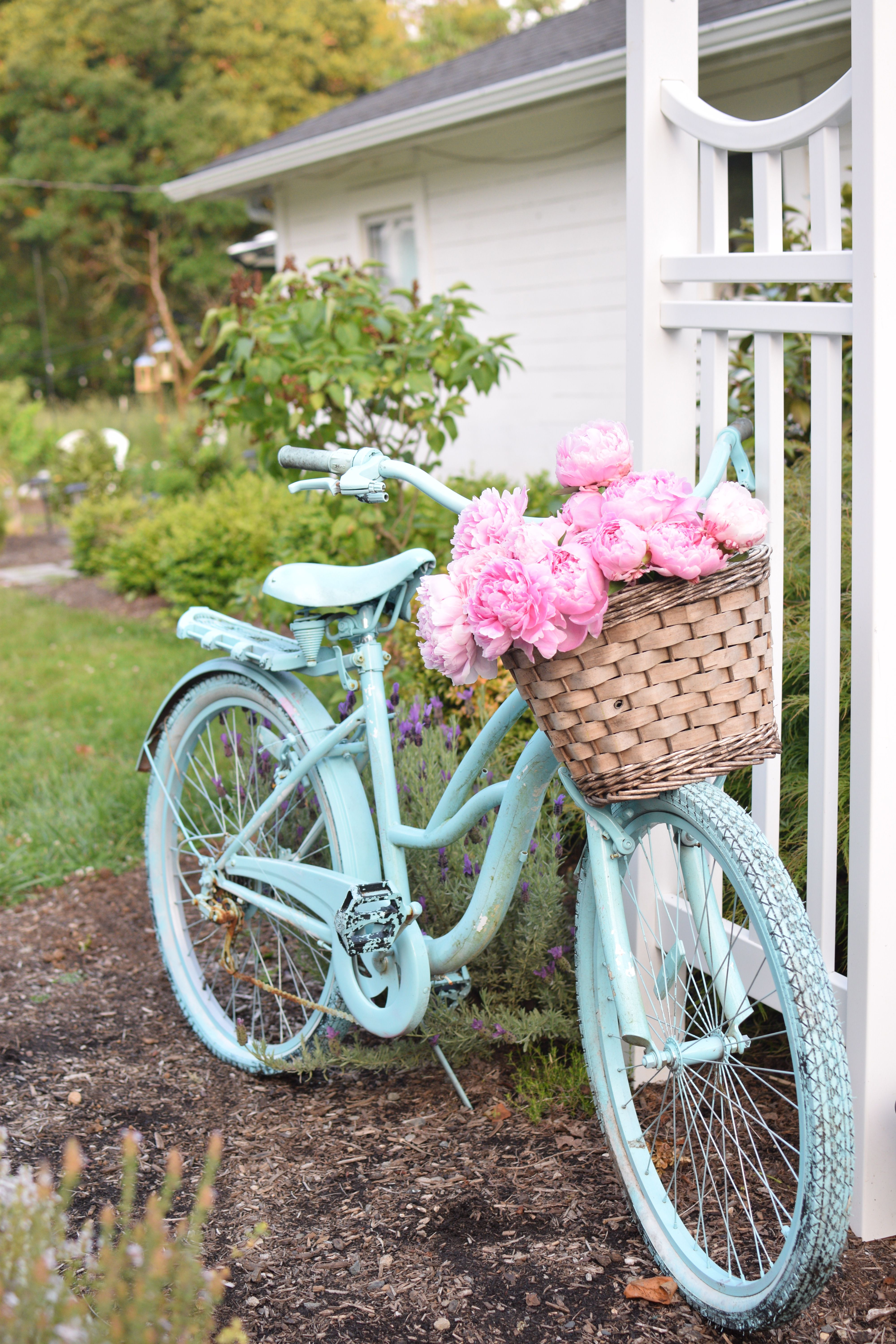The Girl Who Painted Her Bike Blue Vintage Bike Decor Paint