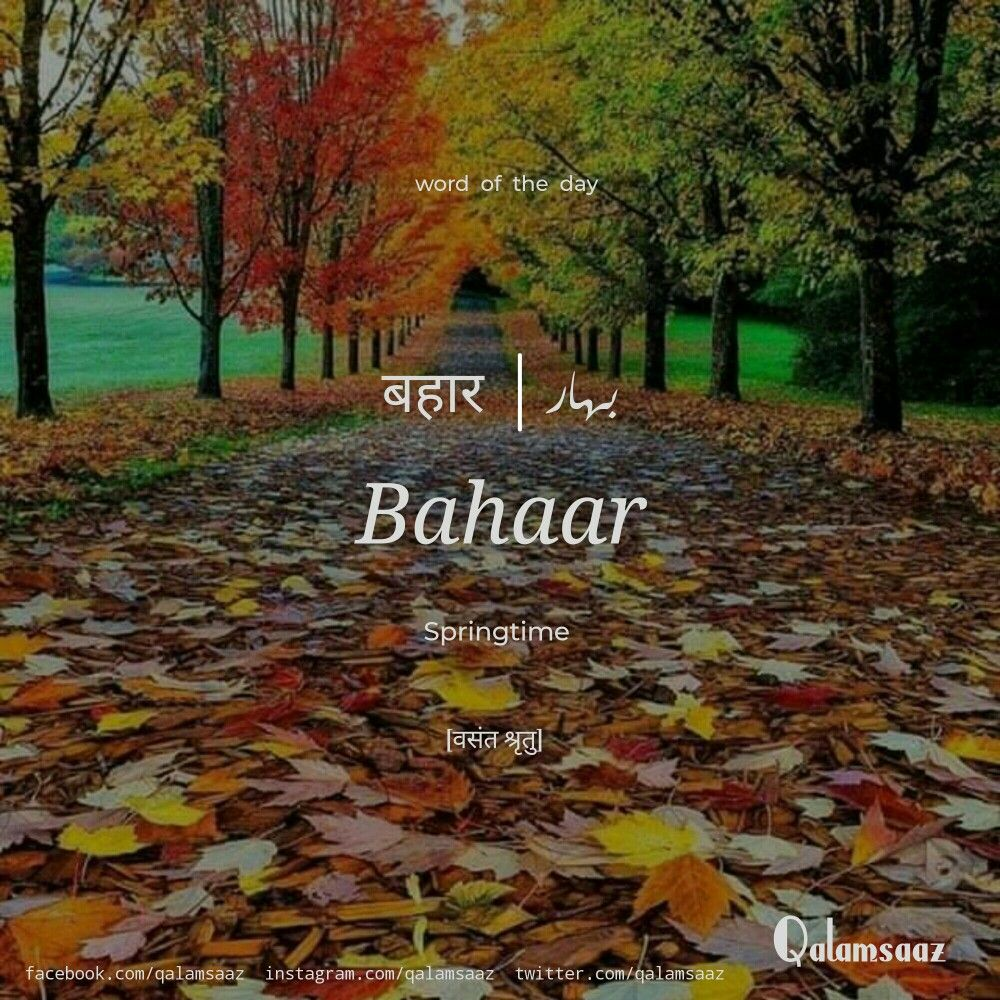 Bahaar Springtime (With images) Word of the day