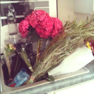 Flower pick up from Ensign