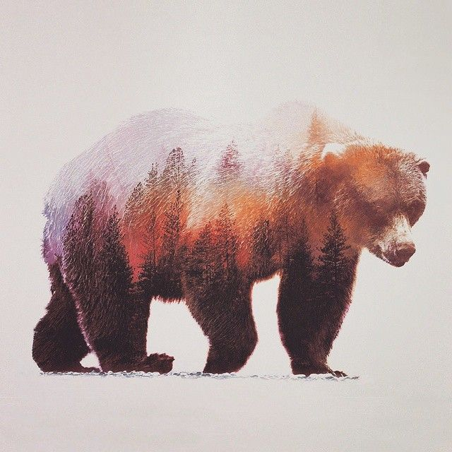 Beautiful Photo Series That Uses Double Exposure To Combine The Beauty Of Nature With The Residing Wildlife Brown Bear Art Bear Paintings Bear Art