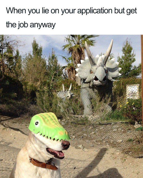 Funny Pictures For Today #10 (Work is fun) — 29 Pics.