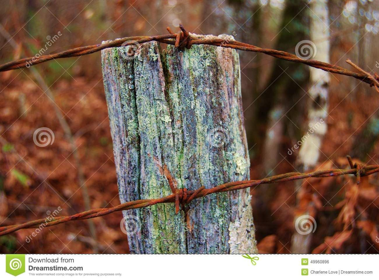 Old Fence Post With Barbed Wire Fence Post With Barbed Wire
