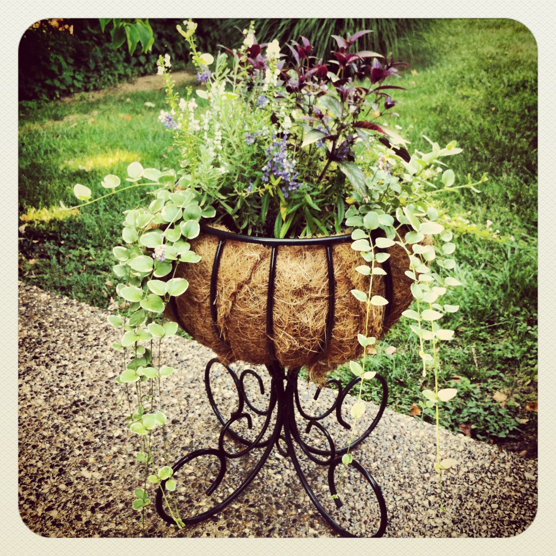 Wrought Iron Planter Iron Planters Outdoor Planters Planters
