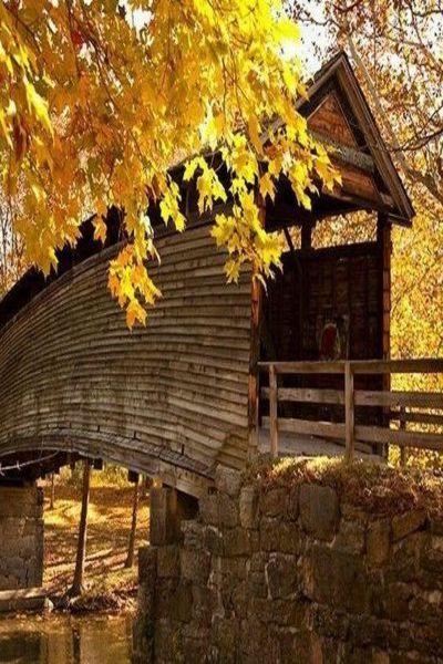 Humpback Bridge Covington Virginia