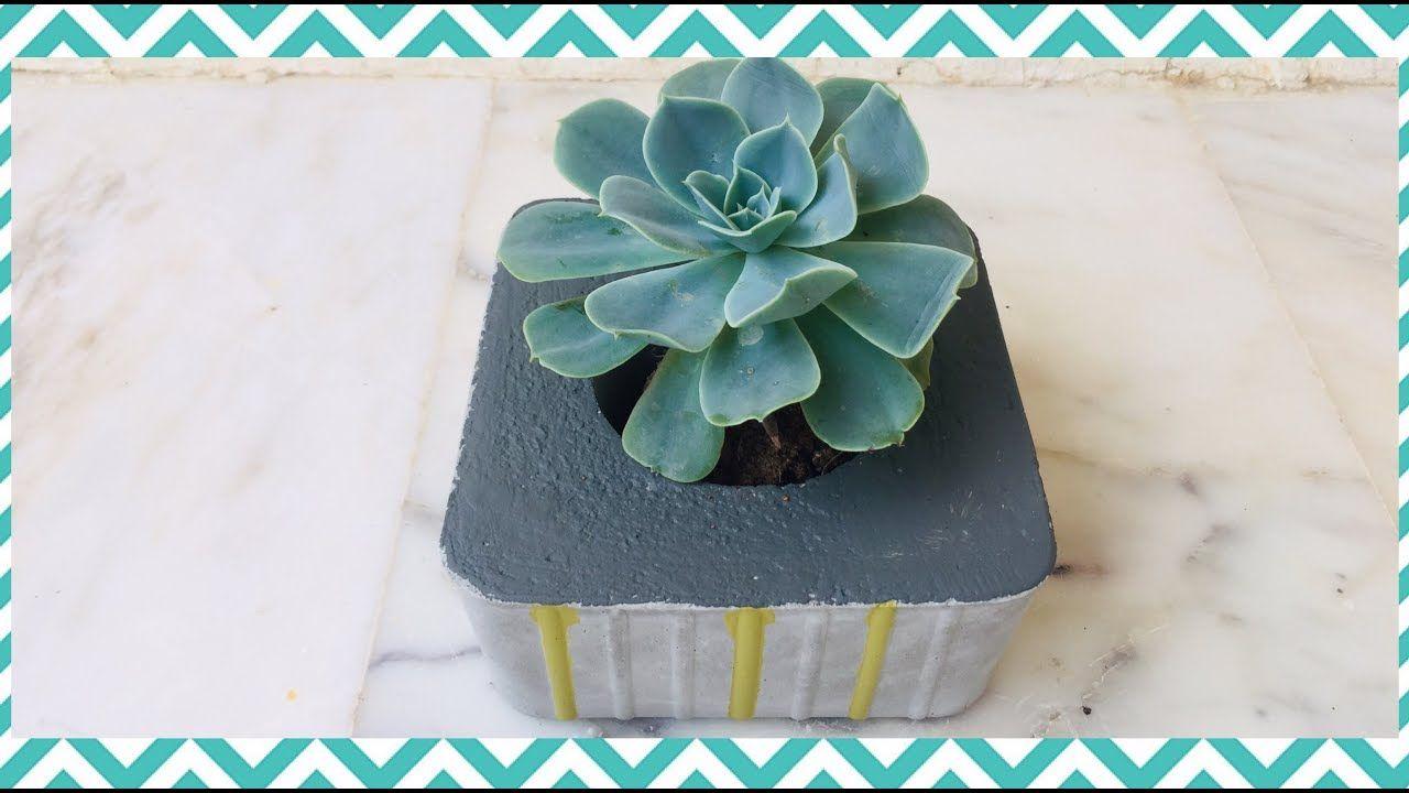 عمل قوار أصيص الزرع من الاسمنت Making A Flower Pot From Cement Succulents Plants Art