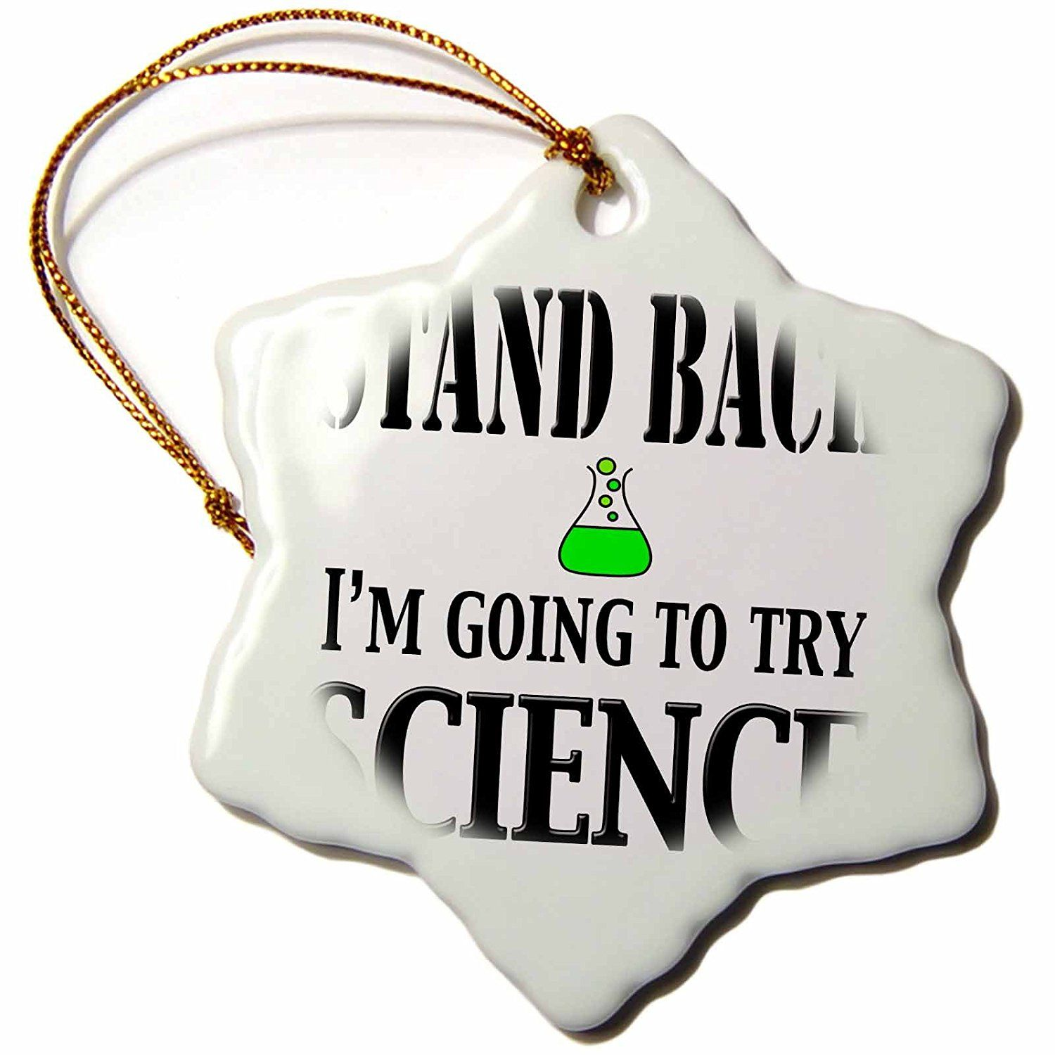 3dRose orn_161116_1 Stand Back I'm Going to Try Science Chemistry Teacher Biology Physics Porcelain Snowflake Ornament, 3-Inch >>> Additional details at the pin image, click it  : Wedding Decor