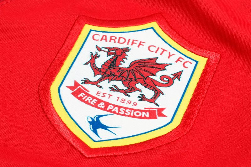 cardiff city football logos pinterest. Black Bedroom Furniture Sets. Home Design Ideas