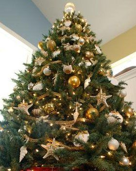 Obsessed with this gold, shell themed tree. Classy and oh so ...