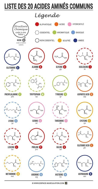 les acides amin s sont les constituants d 39 une liaison peptidique puis des prot ines il existe. Black Bedroom Furniture Sets. Home Design Ideas