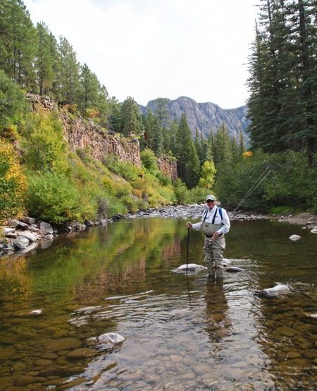 New Mexico Fly Fishing Photos Images Fly Fishing Fishing Photos Fishing Photo