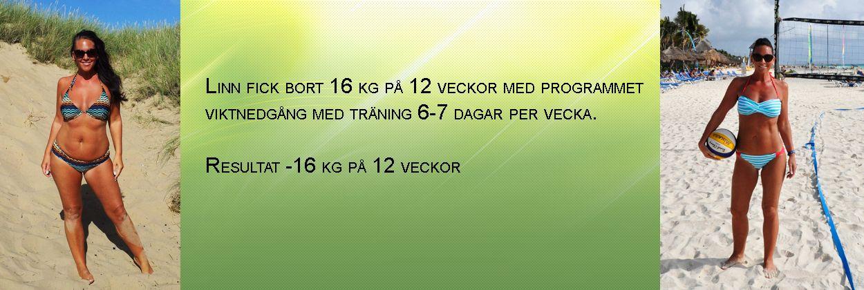 träningsprogram gå ned i vikt