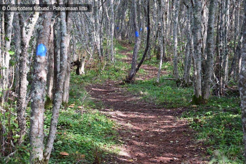 Vandringsled, Tegelbruksbacken - Vaellusreitti, Tiilitehtaanmäki
