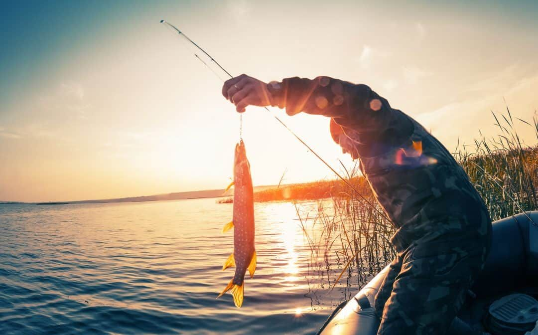 Best Times to Catch Fish (And Catch Them Quick!) Fall