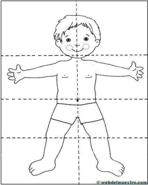 Пазл части тела картинки для детей