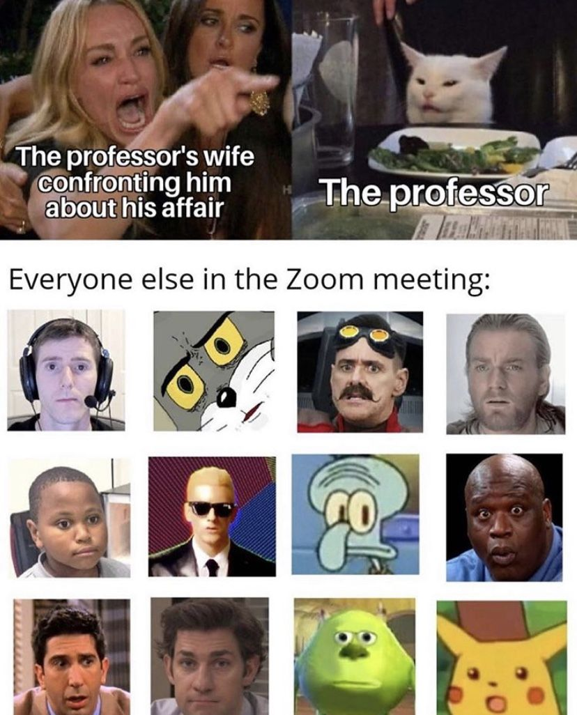 Professor S Wife Zoom Call Angry Cat Meme Funny Relatable Memes Stupid Funny Memes Funny Pictures