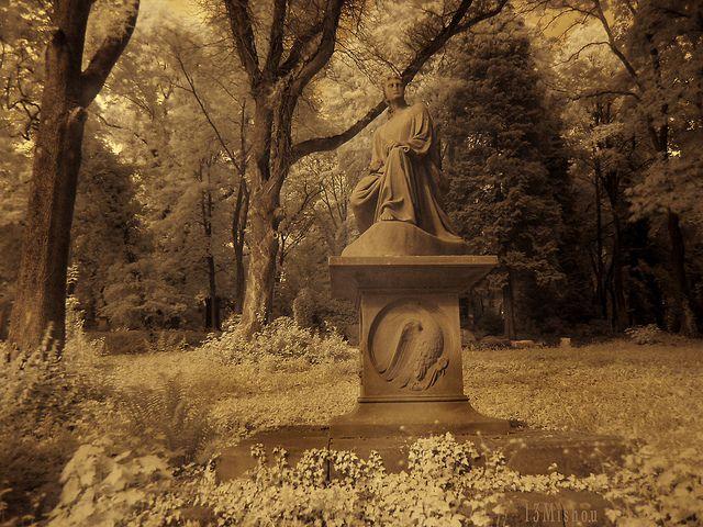 pirmasens, old cemetery