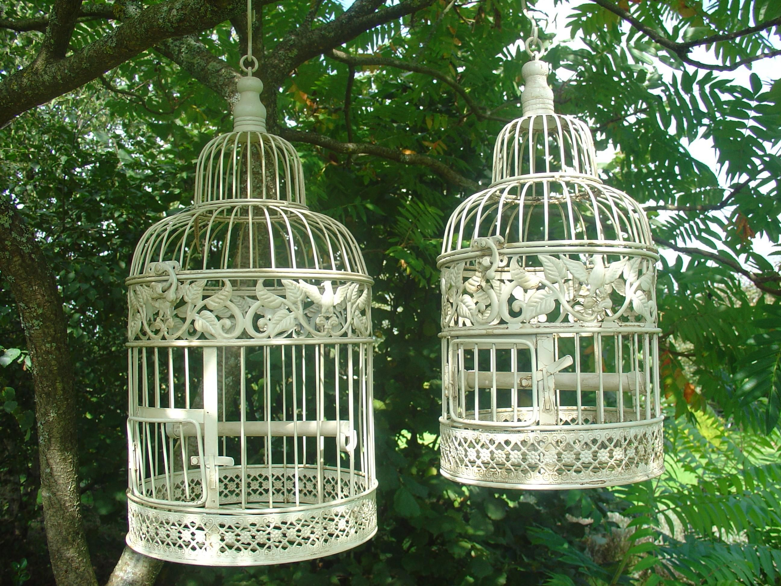 cage a oiseau ouvrez ouvrez la cage aux oiseaux bird cage cage et birds. Black Bedroom Furniture Sets. Home Design Ideas