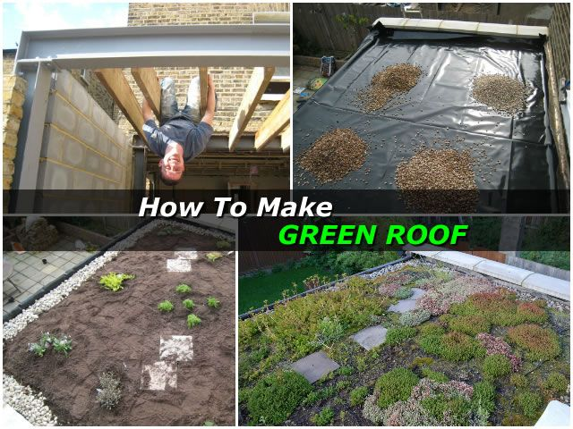 How To Make A Green Roof
