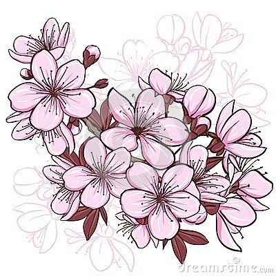 Flor De Cerezo Flor De Cerezo Dibujo Flor De Cerezo Tatuajes De Flor De Cerezo