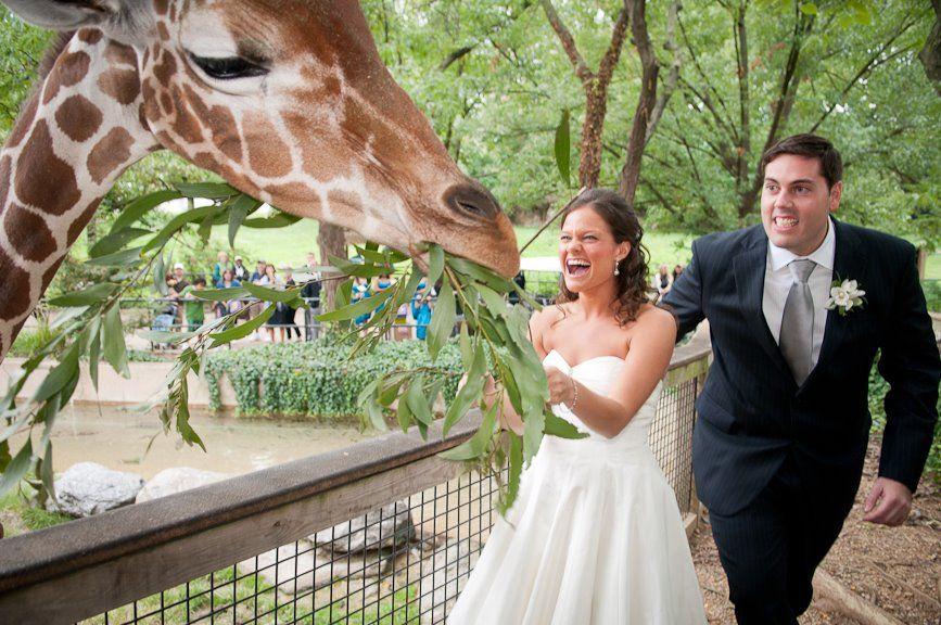 Philadelphia Zoo Wedding