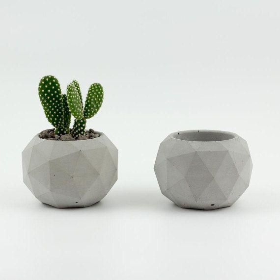 Jardiniere Vase Pour Plante Grasse Succulente Jardiniere En
