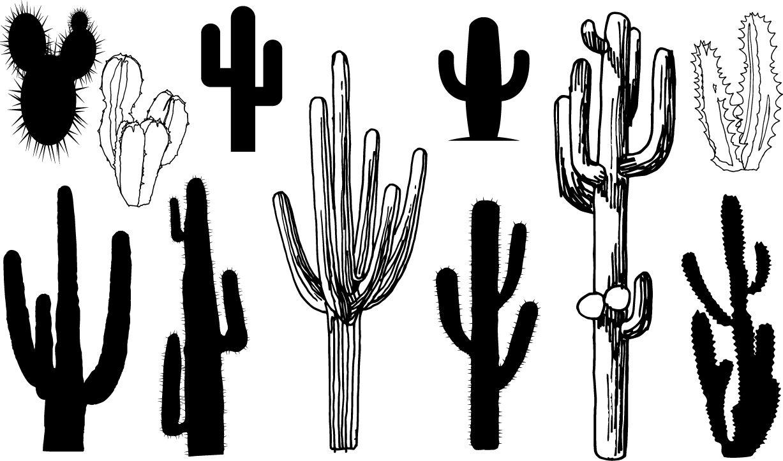 Cactus Silhouettes Arizona Botany Cactus Climate Mexico Nature Western Wild Plants Cactus Silhouette Landscape Silhouette Silhouette Painting