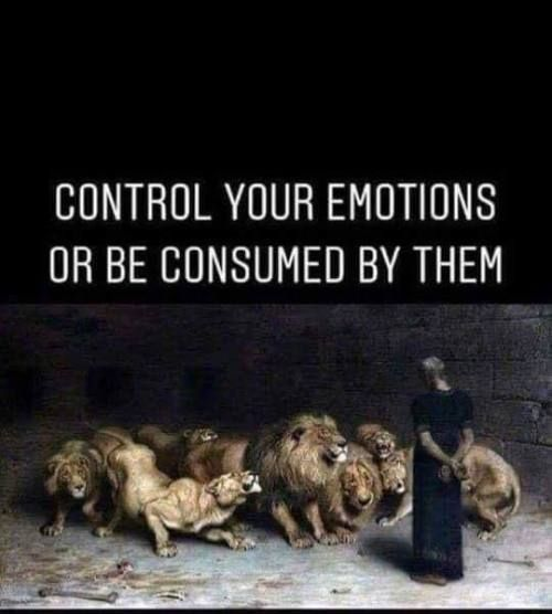 Control Your Emotions Or Be Consumed By Them Self Control Quotes Emotions Control Quotes