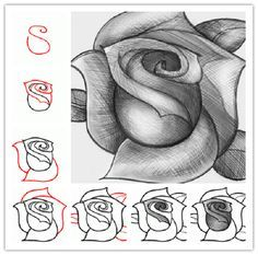 Wonderful idea for drawing a beautiful rose drawings drawing how to draw a rose ccuart Image collections