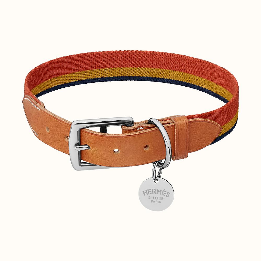 Eton Dog Collar In 2021 Preppy Dog Collar Large Dog Collars Preppy Dog