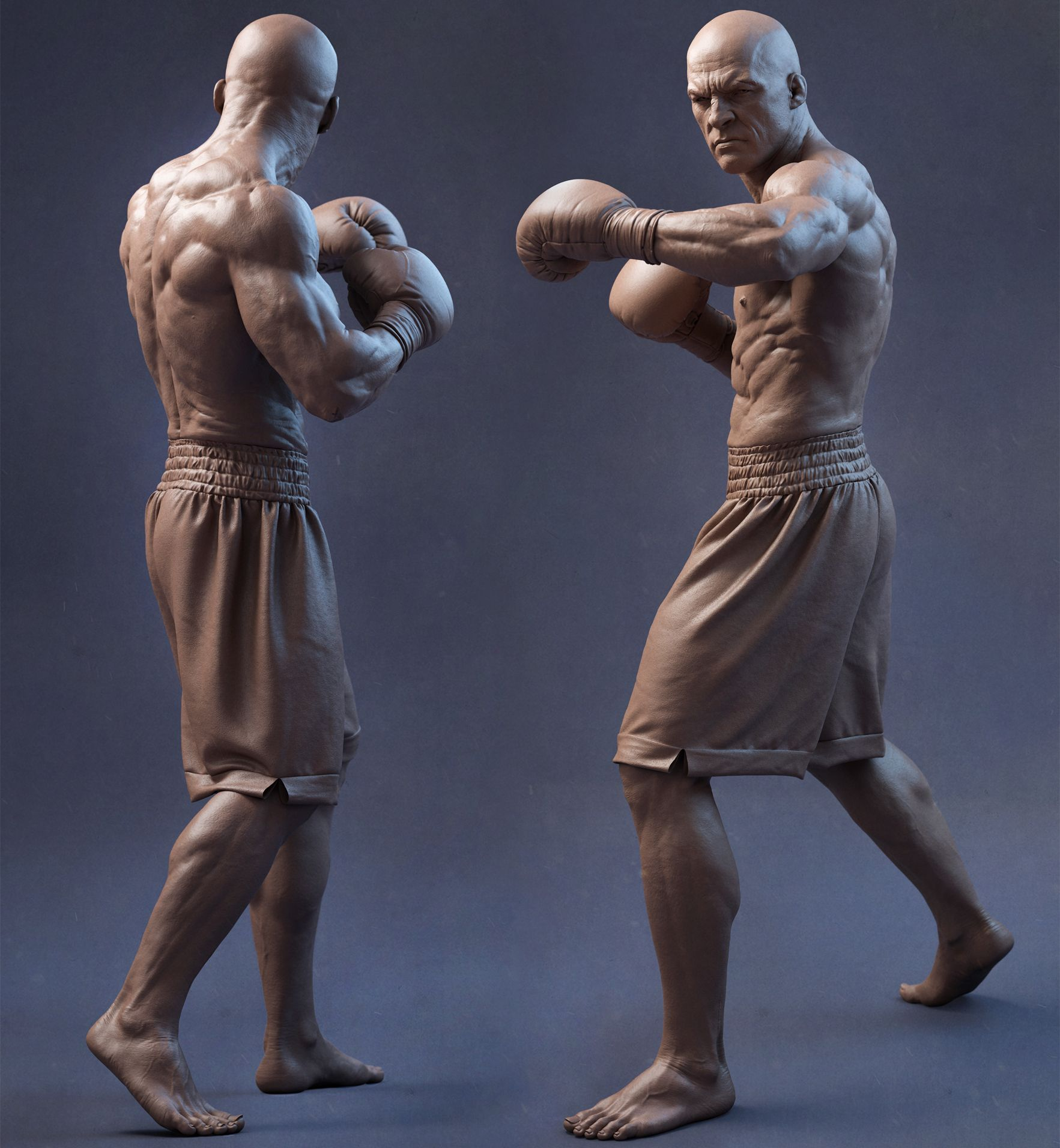 Boxer Turnaround By Sandeep Vs Realistic 3d Zbrush Anatomy Sculpture Anatomy Art