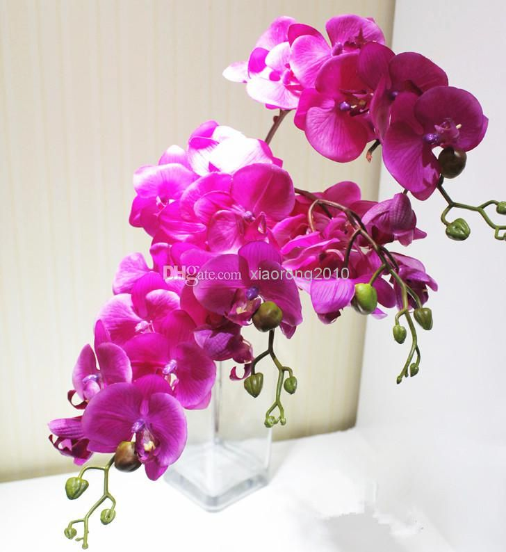 2020 Pu Phalaenopsis Real Touch Butterfly Orchid Fake Orchids Artificial Orchid Flower For Wedding Decoration Wholesale From Xiaorong2010 2 22 Dhgate Com Artificial Orchids Wholesale Flowers Real Touch Flowers